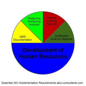 ISO9001 Consultants